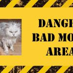 "Warning sign: ""Danger, bad mood area"""