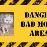 """Warning sign: """"Danger, bad mood area"""""""